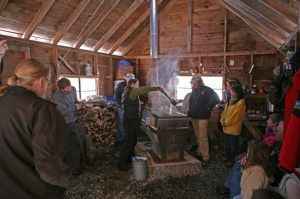 maple sugar madness at prescott farm